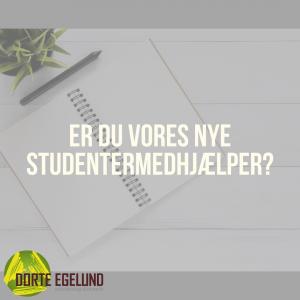 Er du vores nye studentermedhjælper?